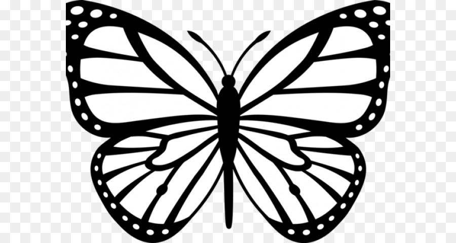 900x480 Monarch Butterfly Black And White Drawing Clip Art