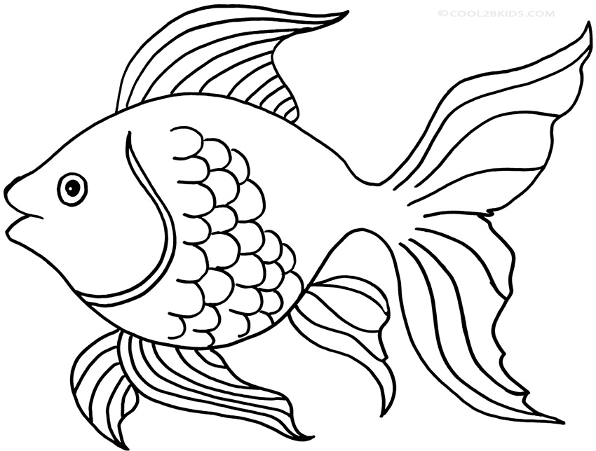 850x644 Goldfish Outline Drawn Goldfish Fish Line Pencil And In Color