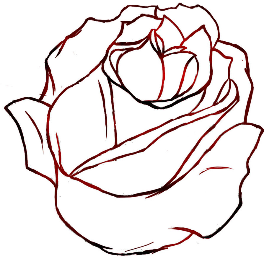 Closed Rose Drawing At Free For Personal Use Flower Line Diagram Simple Of Bud Stock Vector 894x894 Outlines