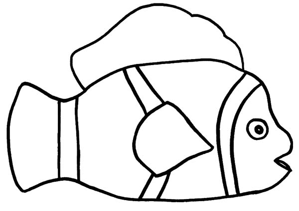 600x425 How To Draw Clown Fish Coloring Pages Best Place To Color