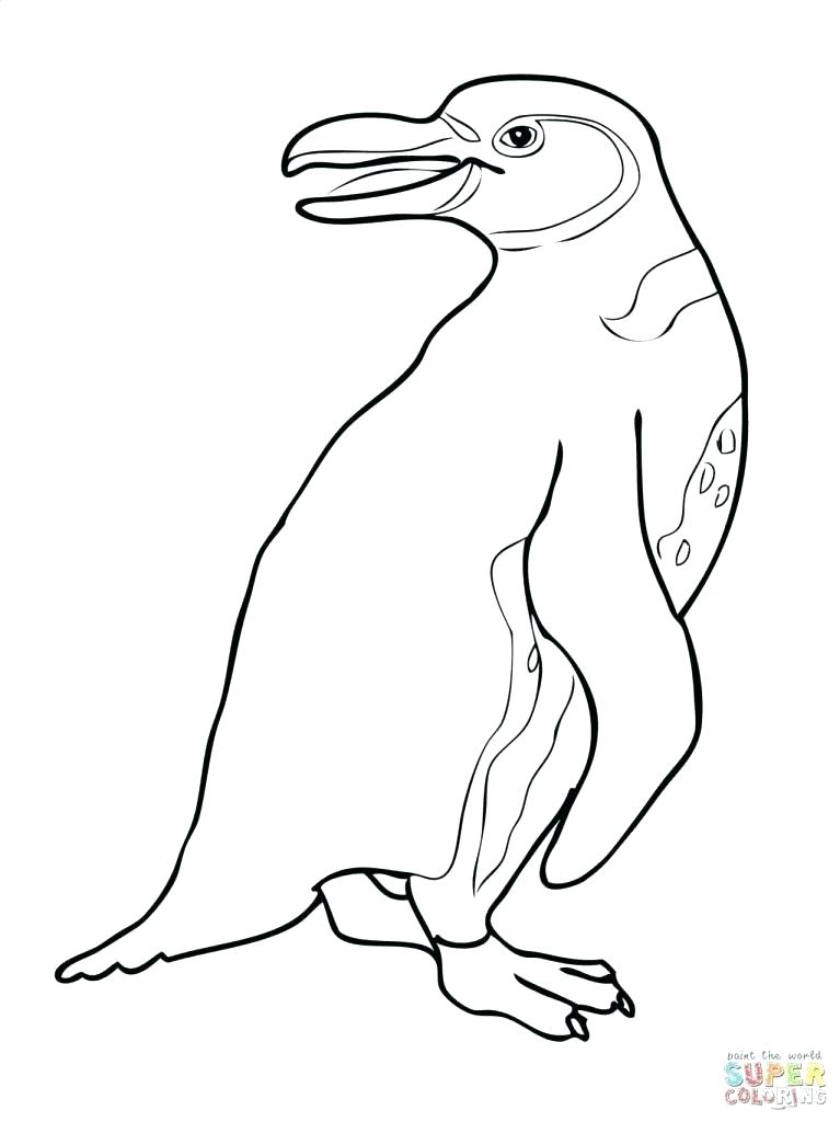 767x1024 Club Penguin Puffles Coloring Pages Club Penguin Coloring Page