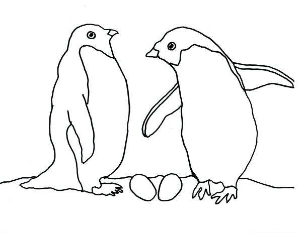 600x464 Penguin Coloring Book Penguin Coloring Pages Photo Club Penguin