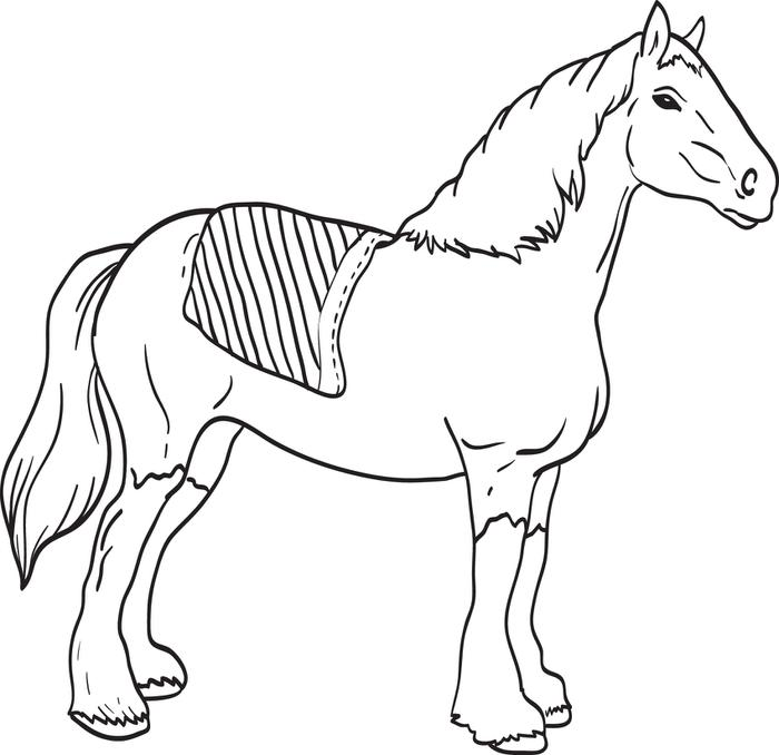 Clydesdale drawing at free for personal for Clydesdale coloring pages