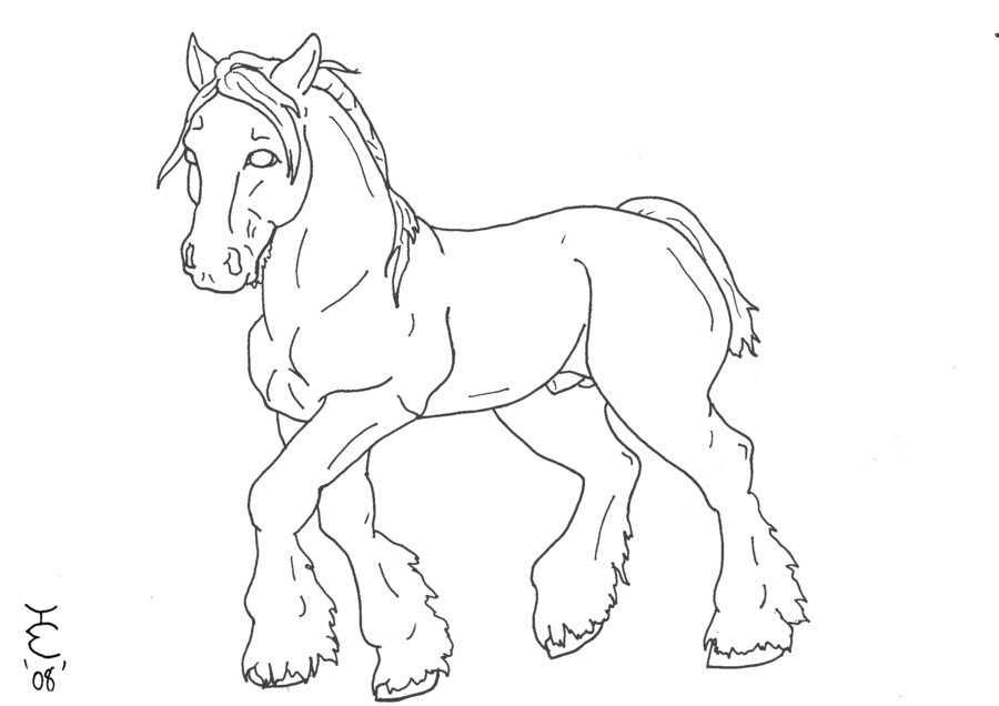 900x636 Clydesdale Lineart By Tobiteus On DeviantArt