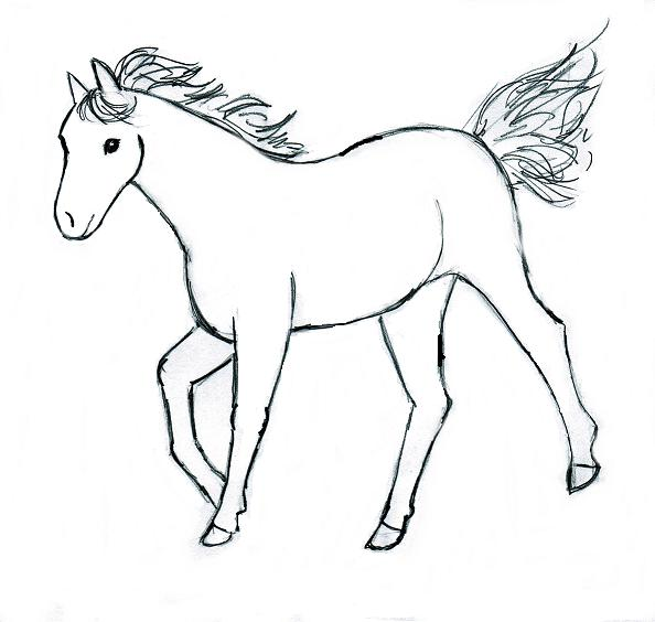 594x564 Easy Horse Drawings Step By Step