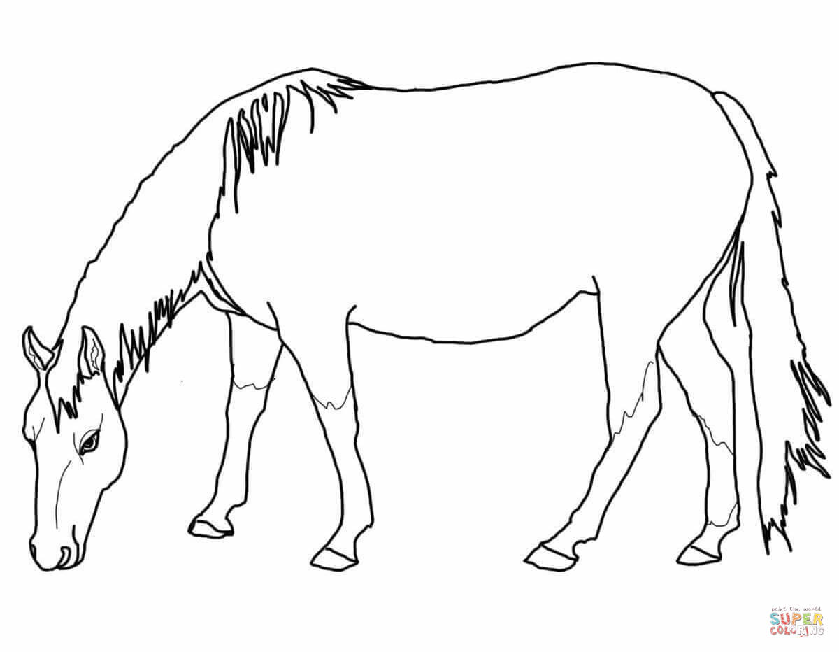 1200x932 Grazing American Quarter Horse Coloring Page Free Printable