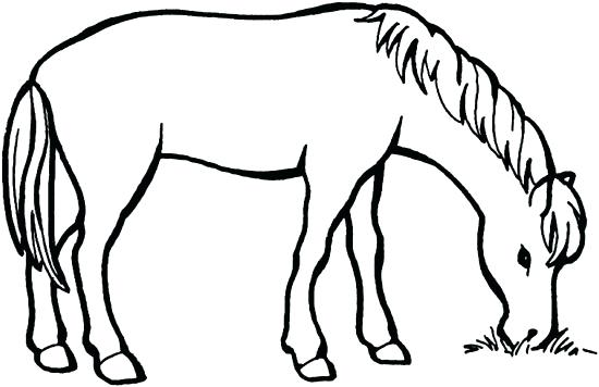 550x356 Horses Pictures To Color Horse Coloring Pages For Adults Horse