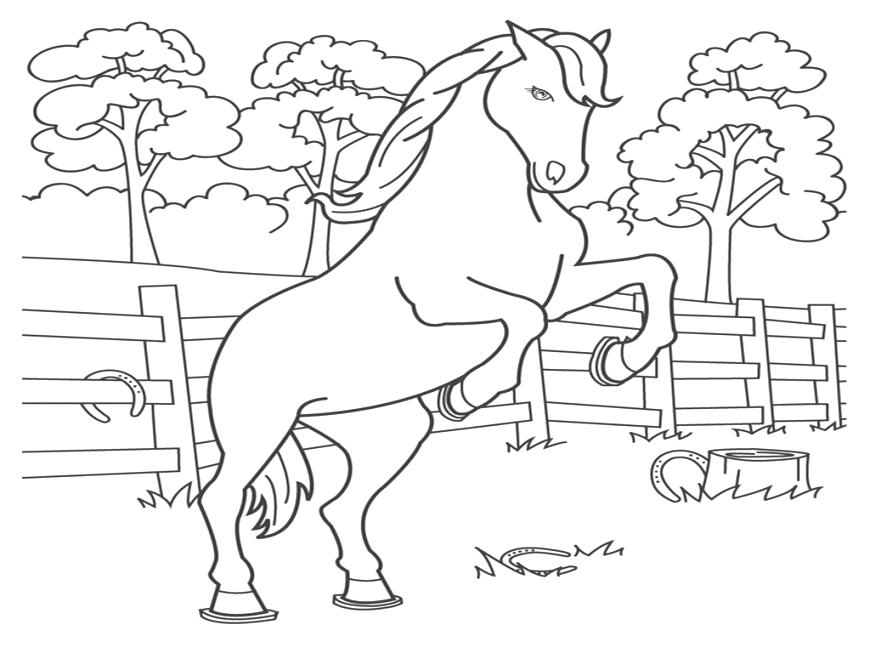 870x653 Printable Coloring Pages Horses Click The Horse And Foal Coloring