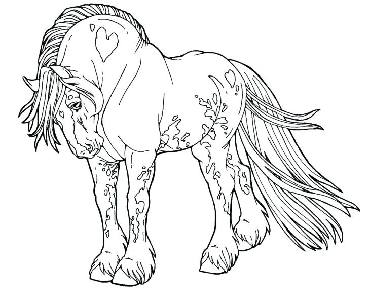 728x604 Printable Coloring Pages Of Horses Click To See Printable Version