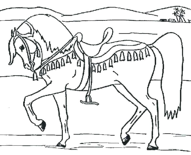 800x649 Printable Coloring Pages Of Horses Free Coloring Pages Of Horses