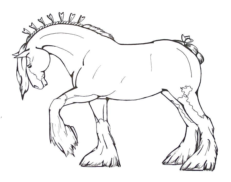 900x710 Clydesdale Coloring Pages Coloring Page For Kids