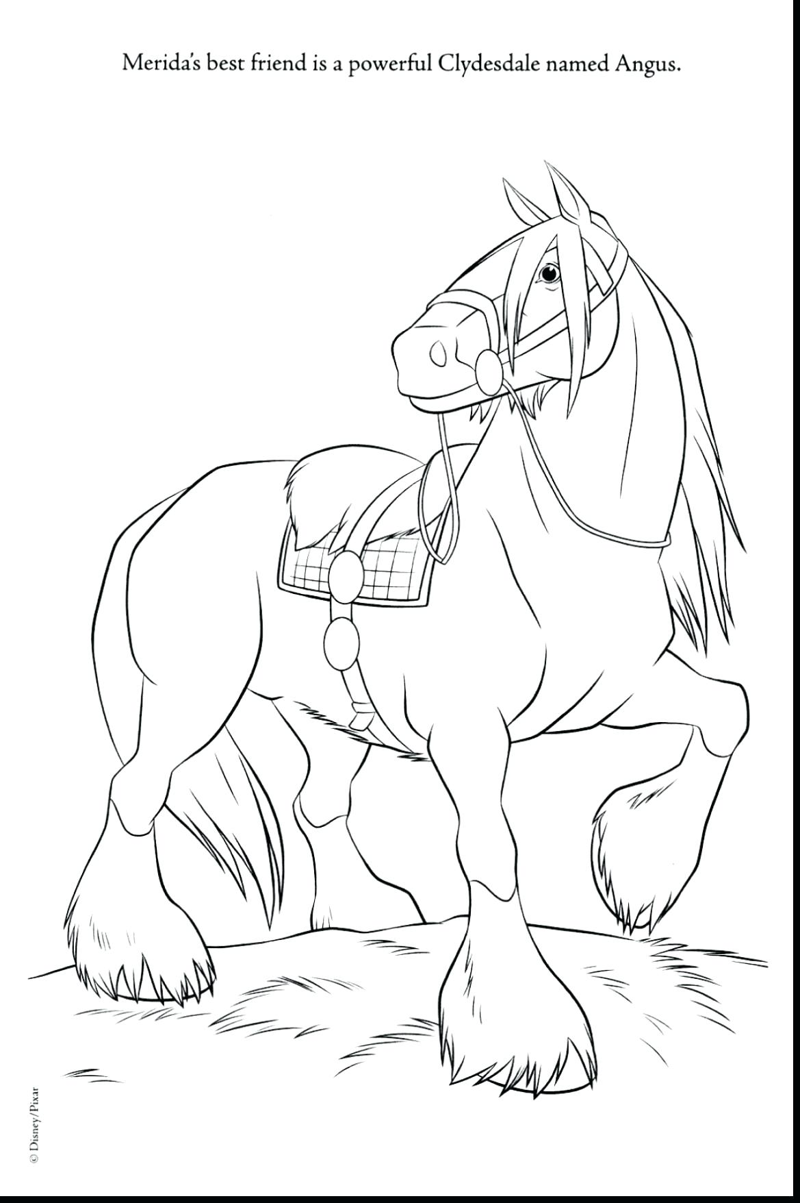 Clydesdale horse drawing at free for for Clydesdale coloring pages