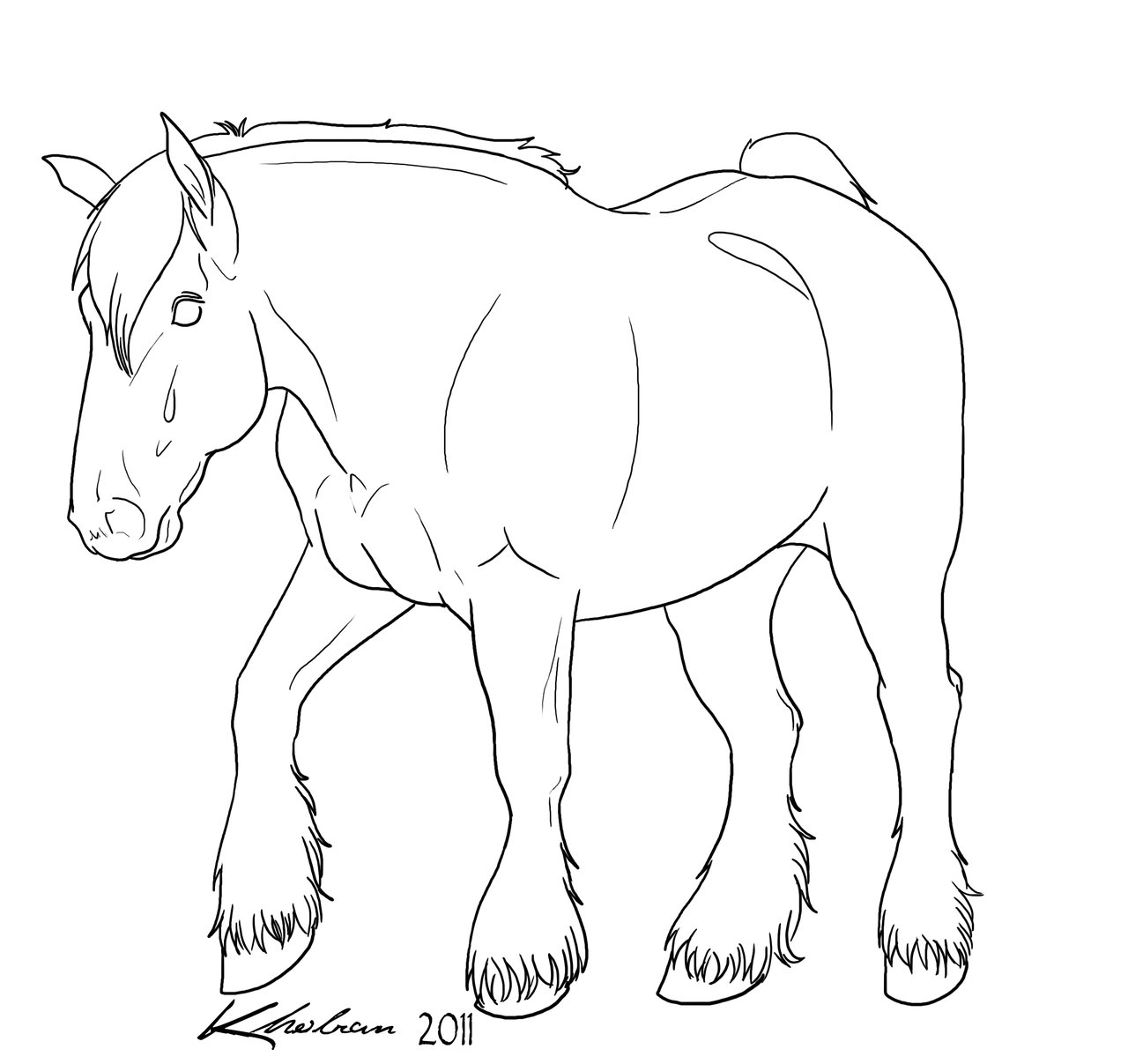 clydesdale coloring pages - photo#30