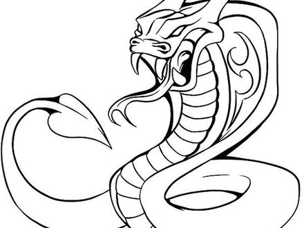 440x330 34 King Cobra Coloring Page, Cobra Coloring Pages Wwwimgkidcom