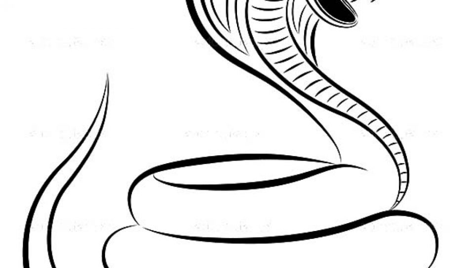 960x544 Realistic King Cobra Coloring Page Free Printable Animals Shelby
