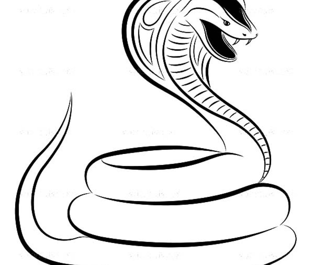 1024x864 Realistic King Cobra Coloring Page Free Printable Animals Shelby