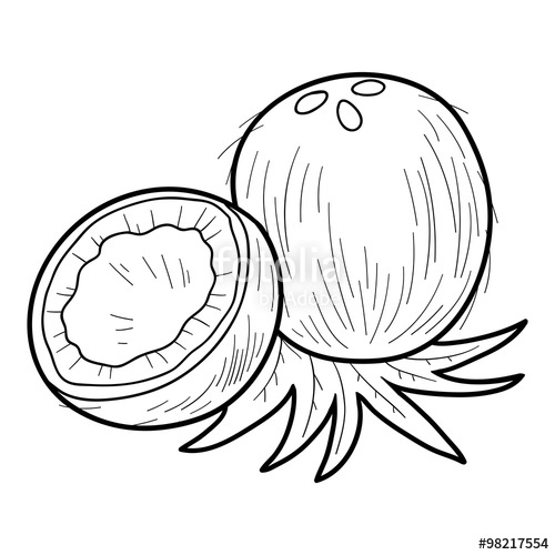 500x500 Coloring Book Fruits Vegetables (Coconut) Stock Image