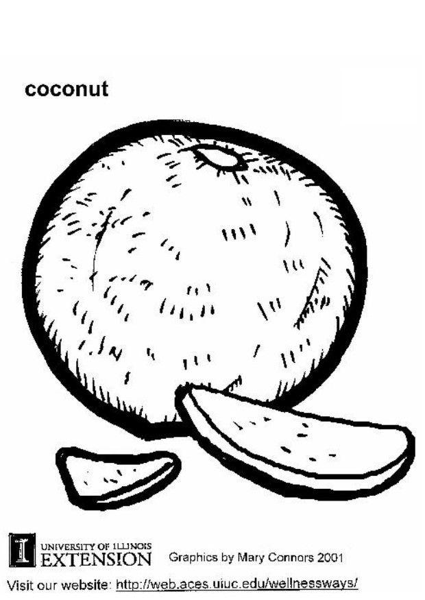 620x875 Coloring Page Coconut
