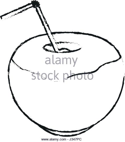 477x540 Drawing Coconut Cocktail Exotic Drink Stock Photos Amp Drawing