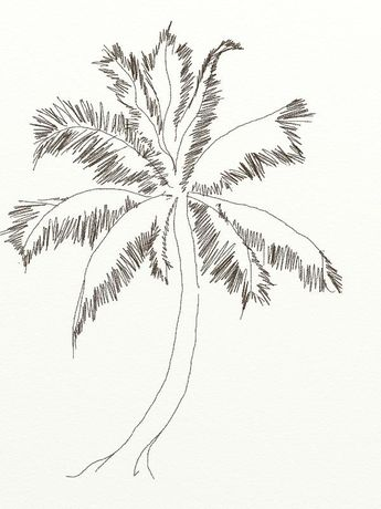 345x460 How To Draw Coconut Tree Anbu Sketches, Draw