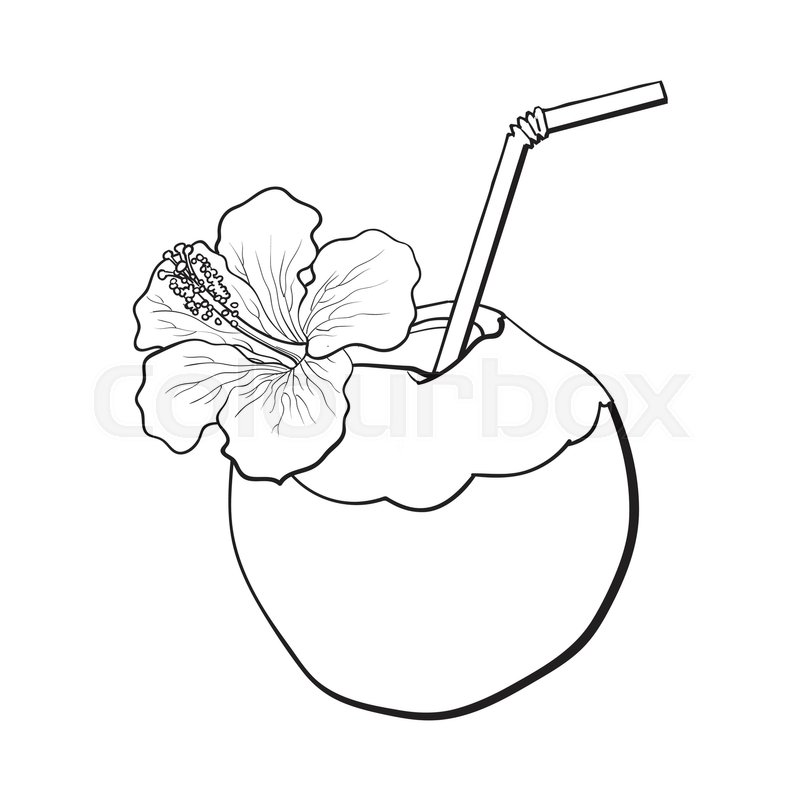 800x800 Coconut Cocktail, Drink Decorated With Hibiscus Flower, Summer