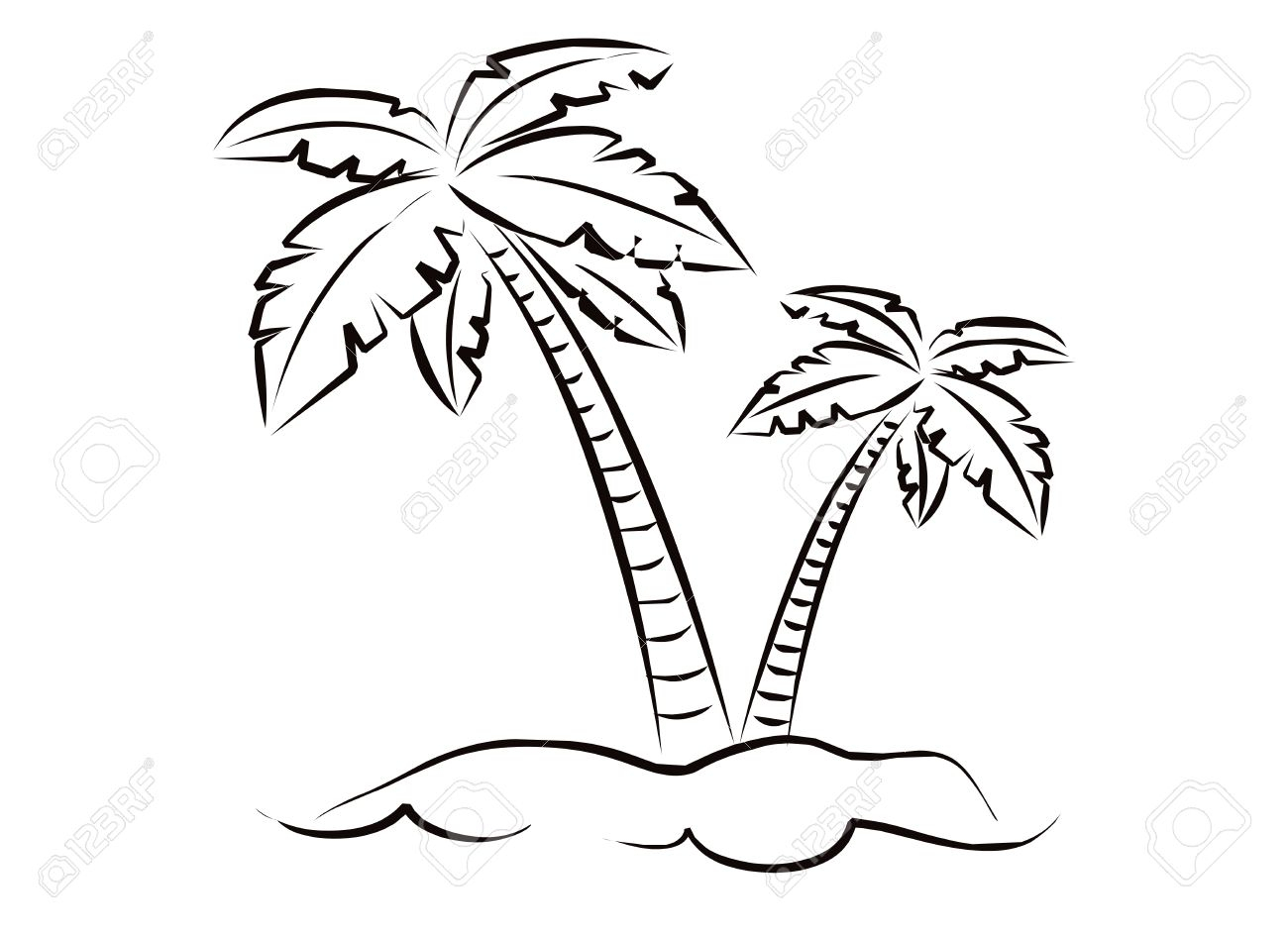 1300x945 Sketch Of A Coconut Tree Drawing Of Coconut Tree My Site