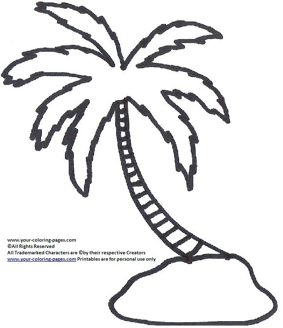 580x672 Palm Tree Coloring Pages Packed With Palm Tree Coloring Pages Tree