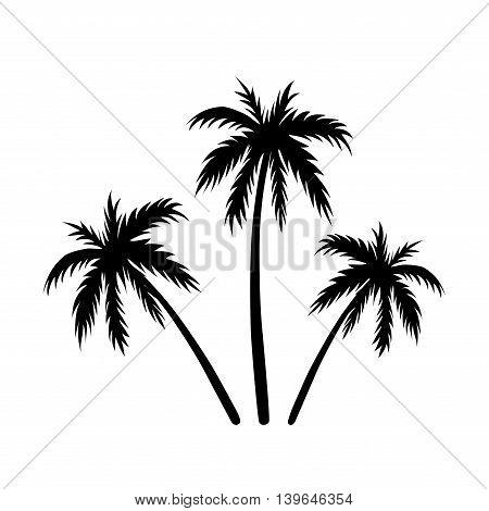 450x470 Three Palms Sketch. Black Coconut Vector Amp Photo Bigstock