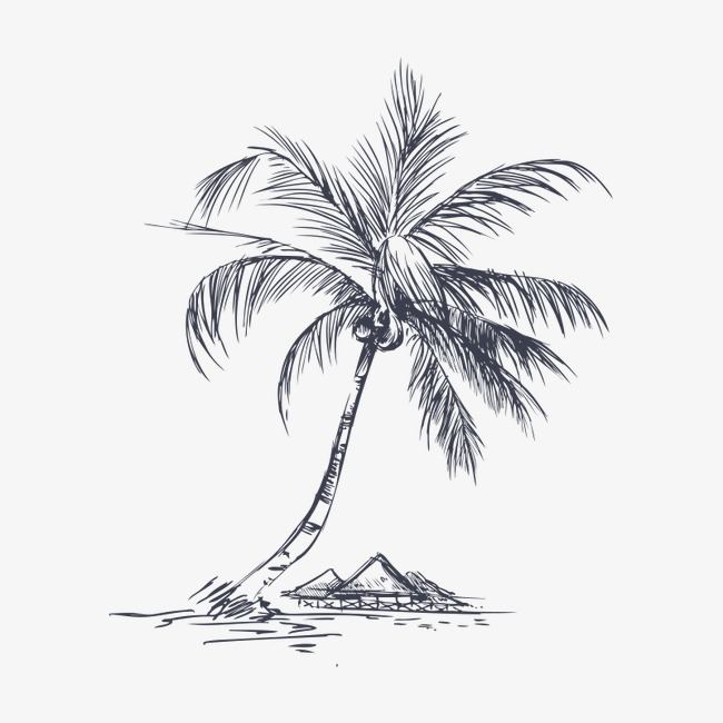650x650 Coconut Tree,hand Painted, Coconut Tree, Hand Painted, Tree Png