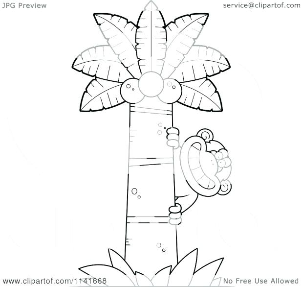 Coconut Tree Pictures Drawing At Getdrawings Com Free For Personal