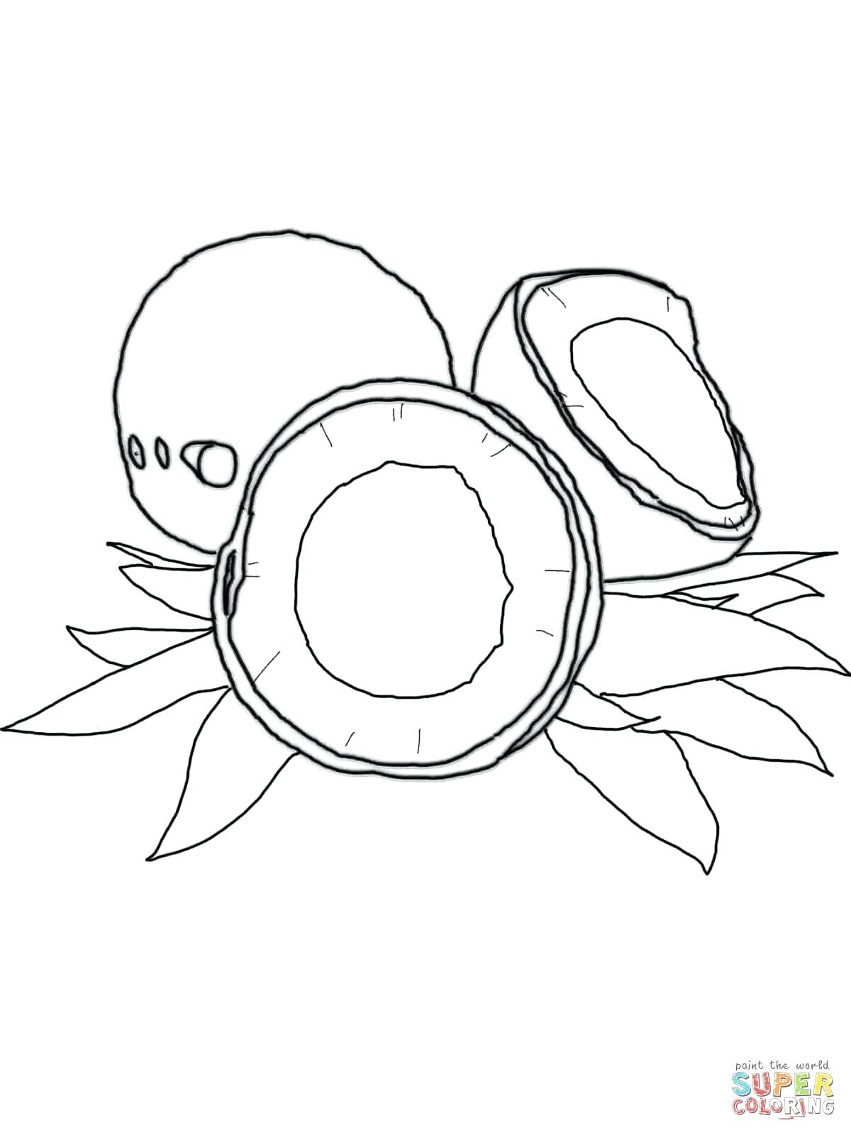 Coconut Tree Pictures Drawing at GetDrawings | Free download