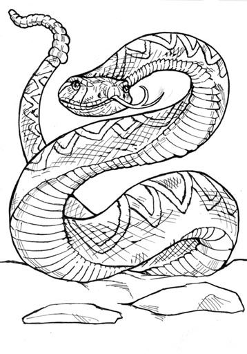 Diamondback Rattlesnake Coloring Pages