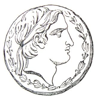 324x330 Filedemetriosisoter, Coin Face.jpg