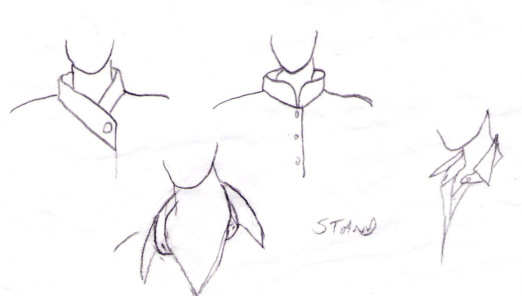 1770x1004 Collar Types Alison Wheeler
