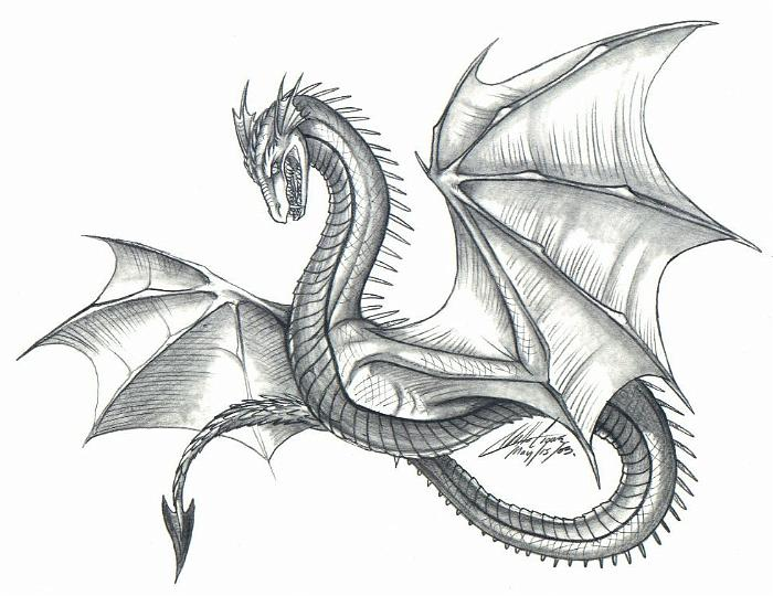 700x540 Gallery Dragon Drawings In Pencil,