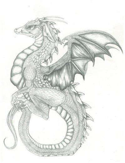 400x518 Pencil Drawing Of Dragon