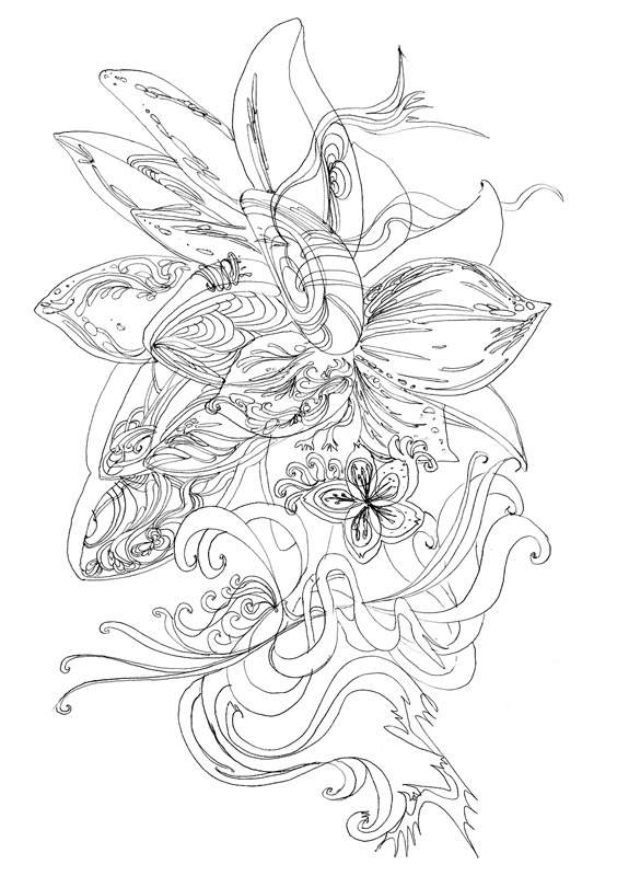 564x800 Miron's Blog Flower Drawing Sketch
