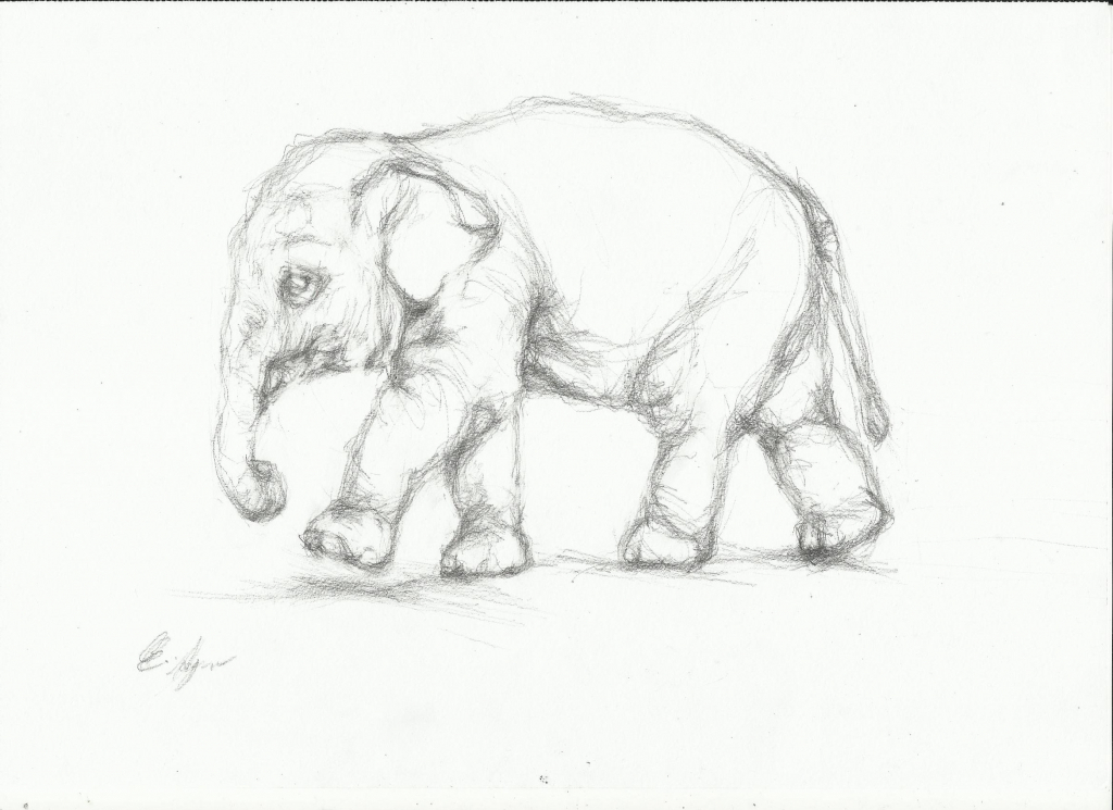 1024x745 Pencil Sketch Animals Color Pencil Drawings Of Animals Free