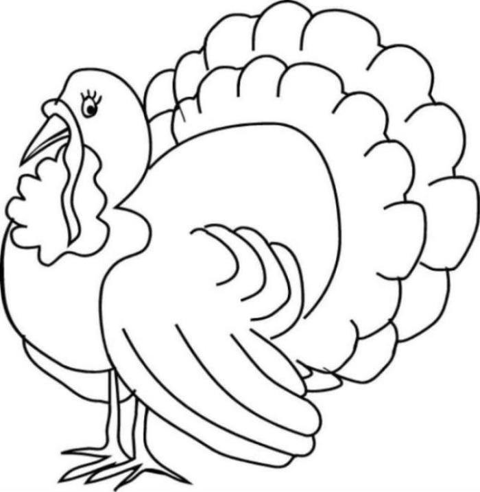 700x717 Magic Coloring Picture Of Turkey Drawings Turkeys 25 Unique Pages