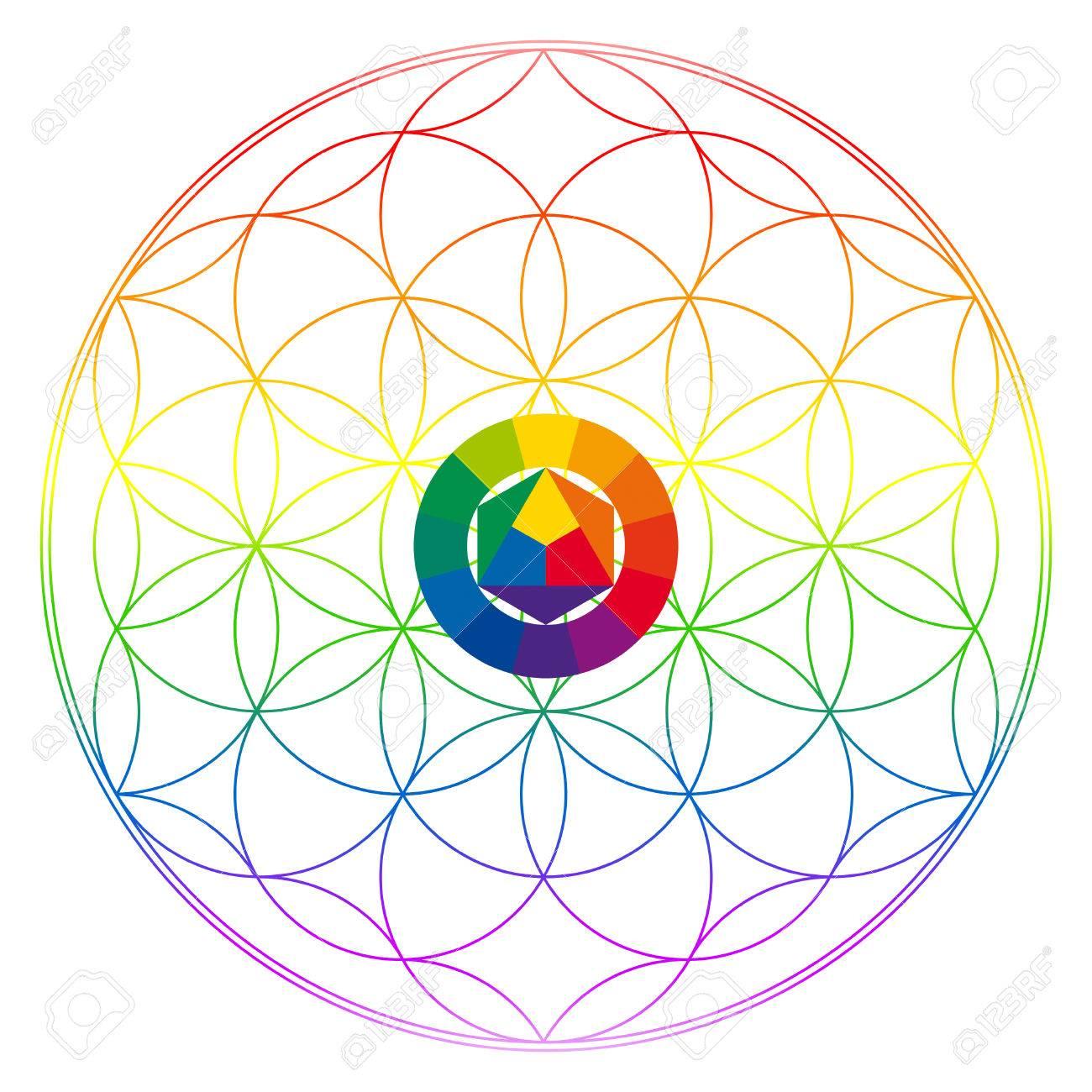 1300x1300 Flower Of Life, Buddhism Chakra Illustration, Color Wheel