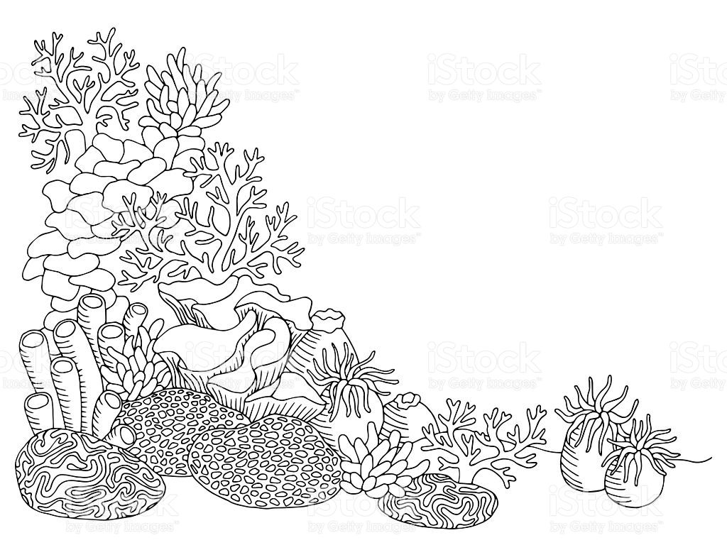 1024x768 Coral Sea Graphic Art Black White Underwater Landscape