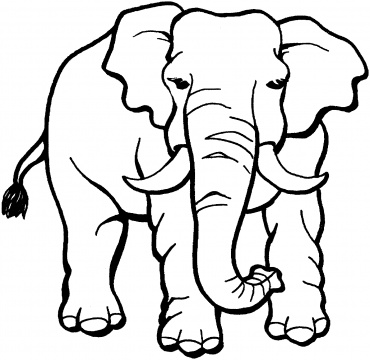 370x360 Cute Ba Elephant Coloring Page Free Printable Coloring Pages