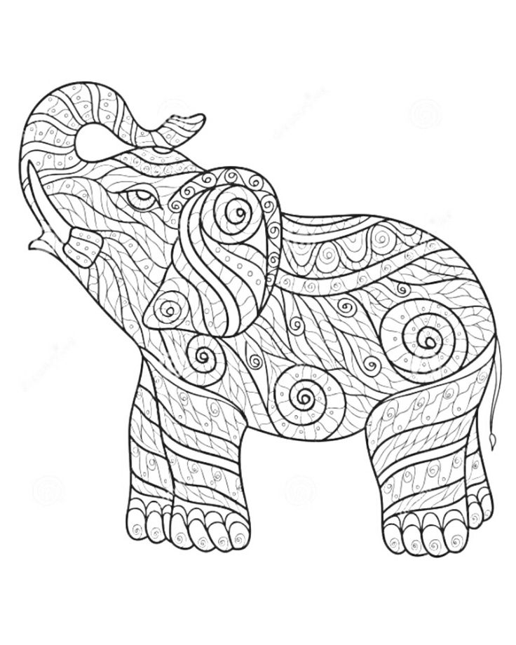 736x920 21 Best Dan Images On Colorful Elephant Tattoo