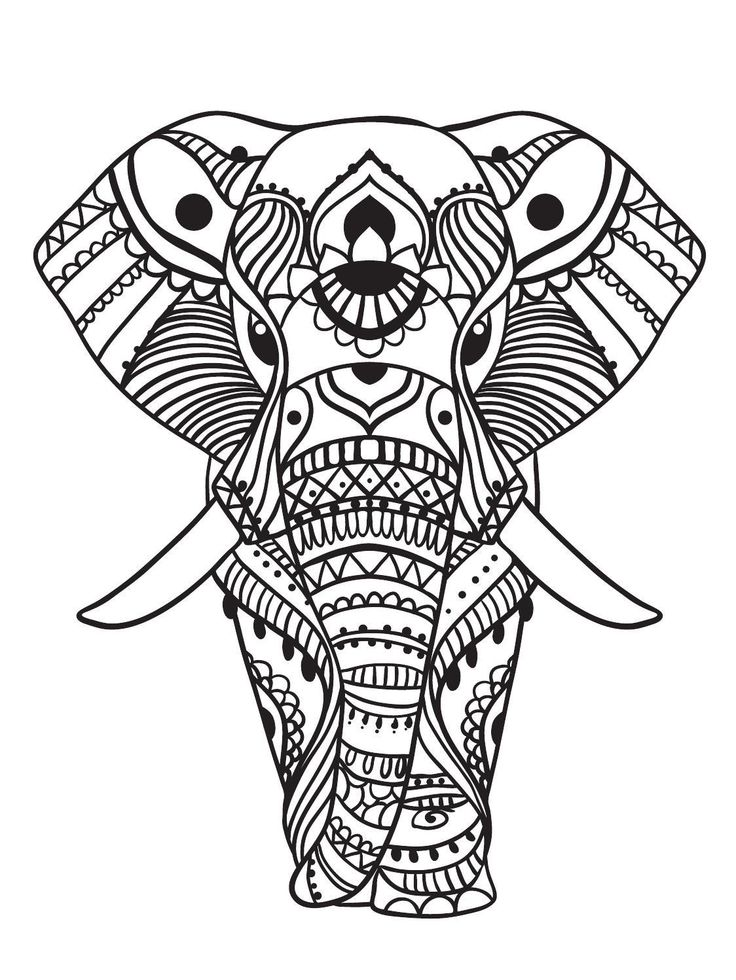 736x980 Coloring Pages For Adults Elephant