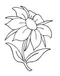 240x300 Flower Color Book