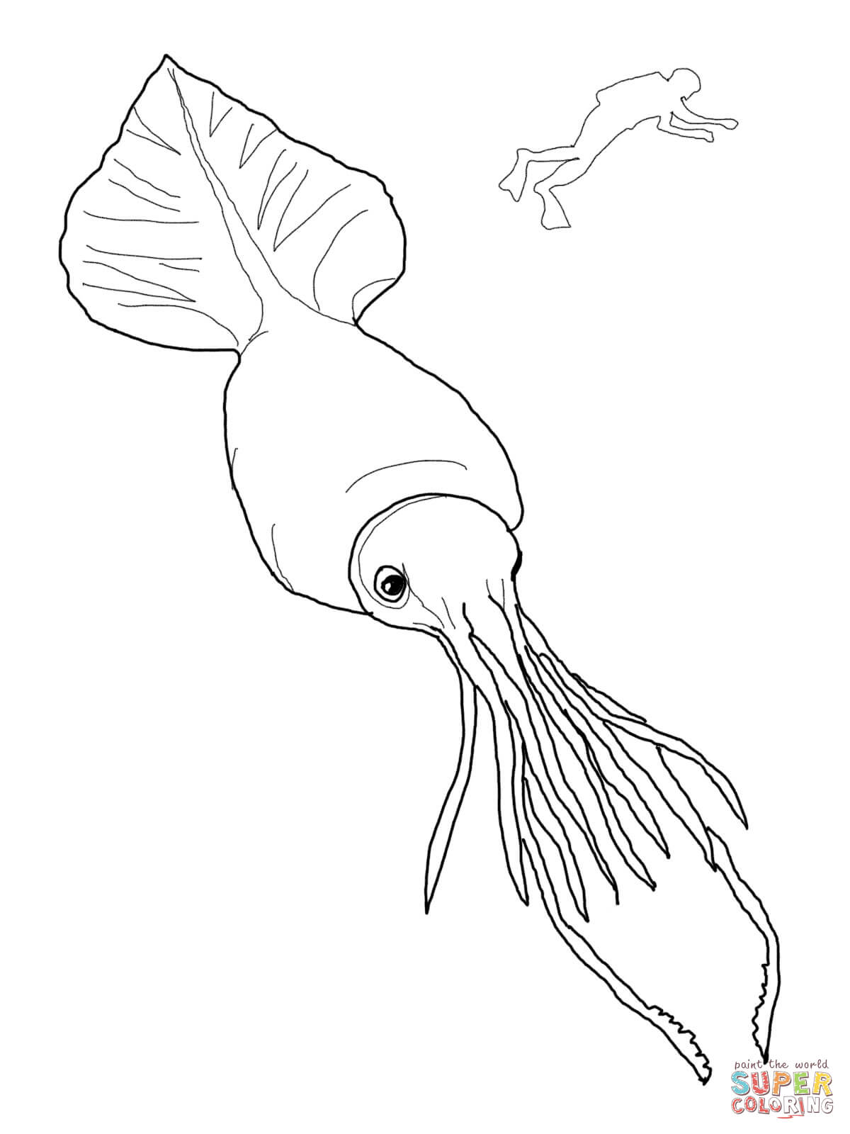 1200x1600 Colossal Squid And Scuba Super Coloring Template