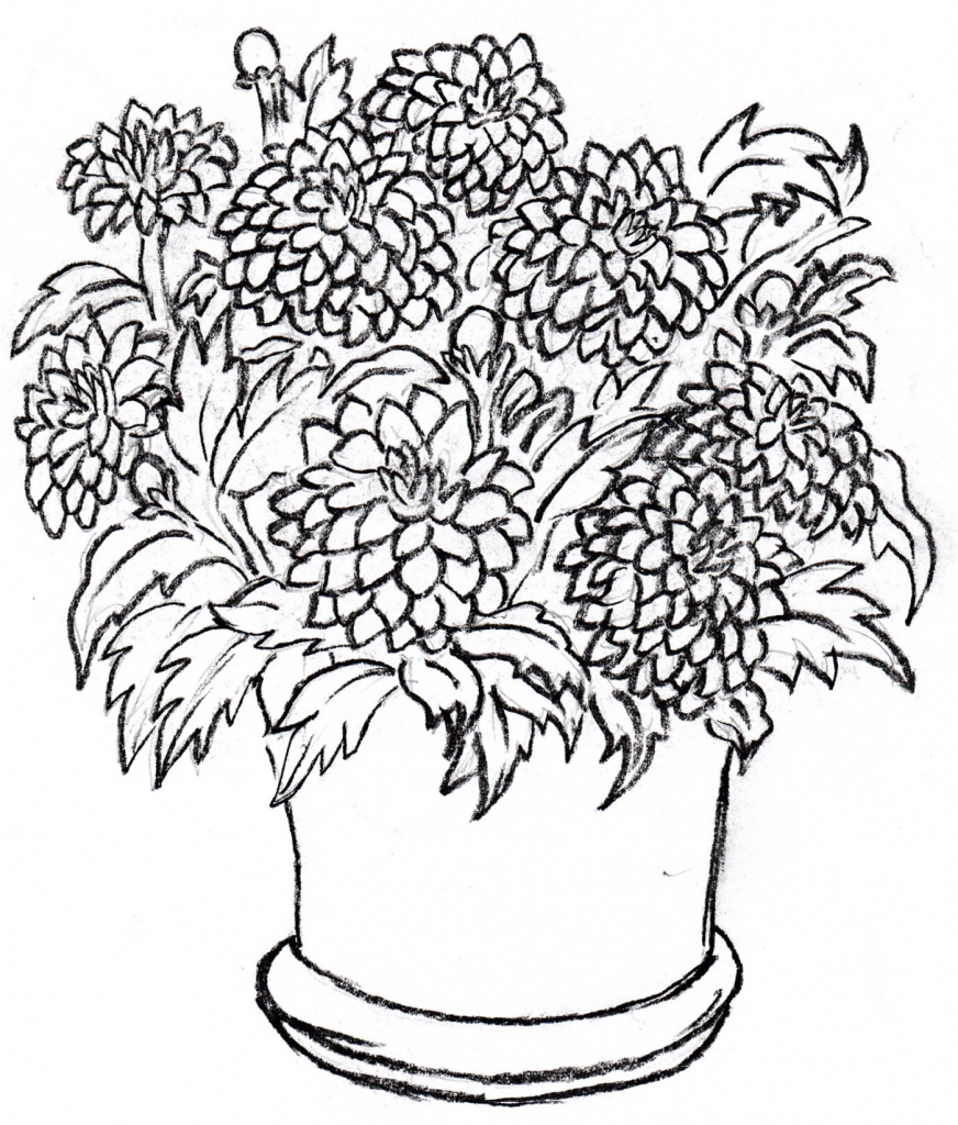 872x1024 Flower Pot Drawing With Colour Drawings Of A Flower Pot