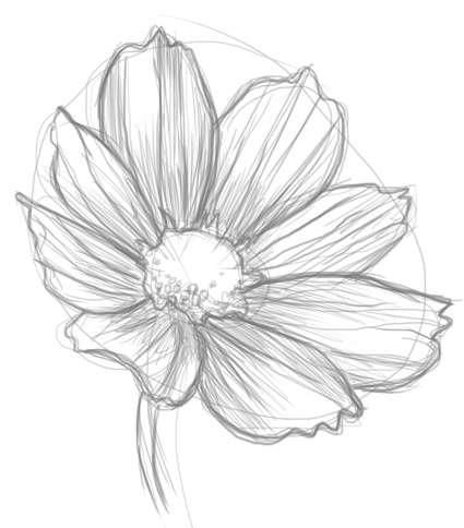 425x484 How To Draw Flowers
