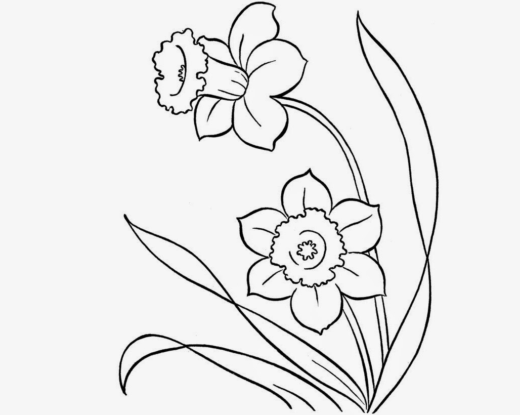 1028x820 Beautiful Flowers Drawings For Kids Colour Drawing Free Hd