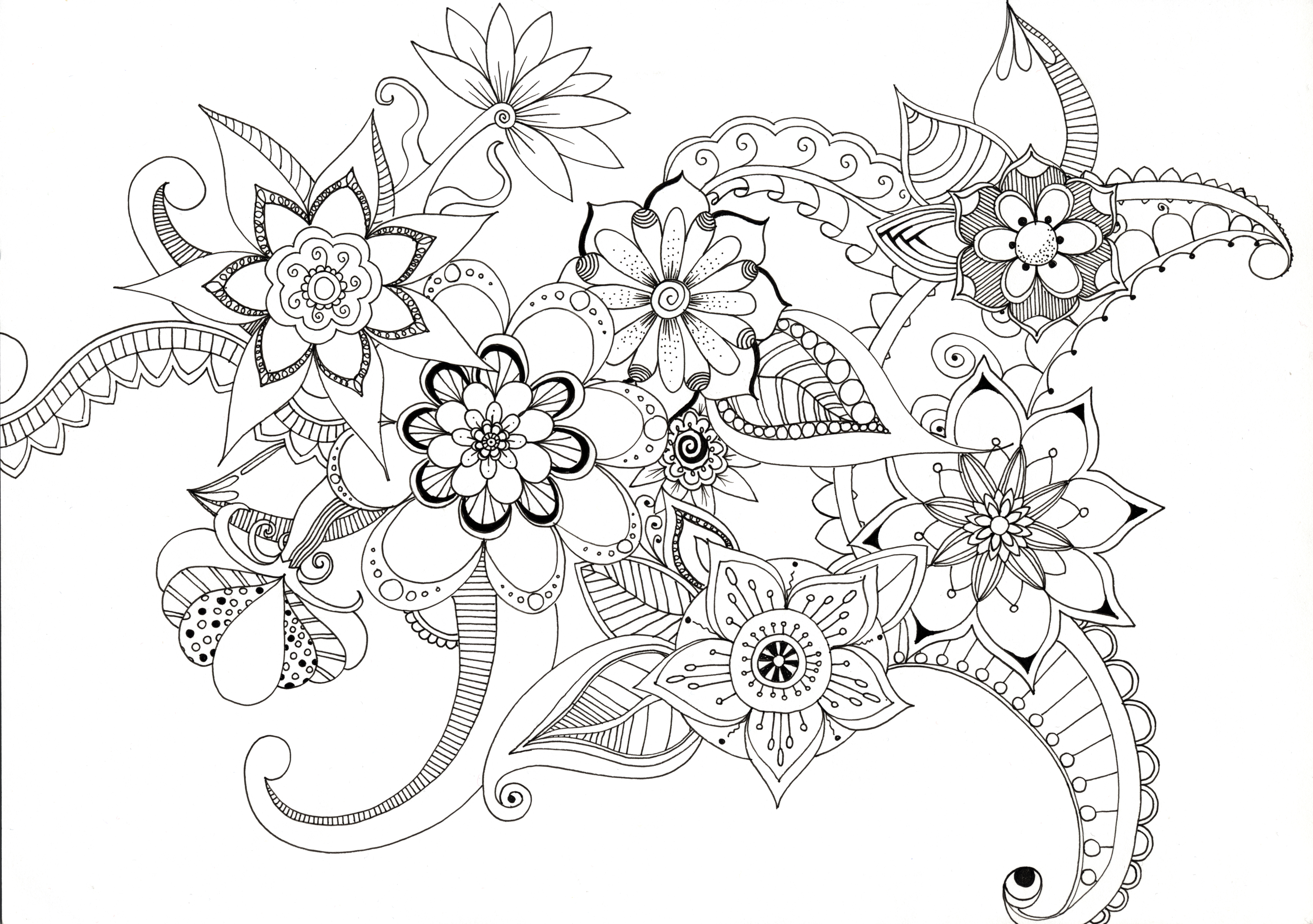 3543x2494 Drawing Lucy Jackson Designs